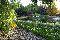 Widok na staw kąpielowy<br/>autor: Piotr Asfeld